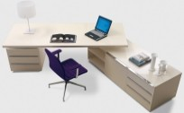 Standard Executive Adjustable and Executive Desks | Xiorex