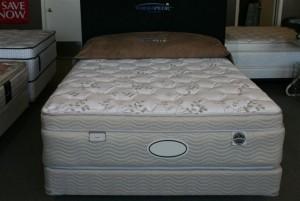 Luxor Dream Mattress Therapedic Pocket Coil Mattress by SleepKing | Xiorex