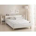 Adonis Mattress European & Standard Firm Mattress by Gautier | Xiorex